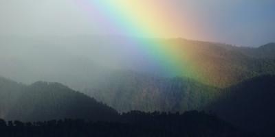 rainbow8a_500