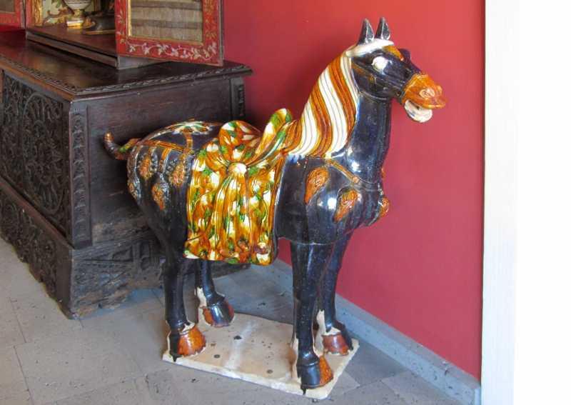 A horse at Hacienda de Abajo, Tazacorte
