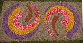 Detail of the flower carpet made of geraniums, wormword, tree heather and other plants. Villa de Mazo, La Palma island
