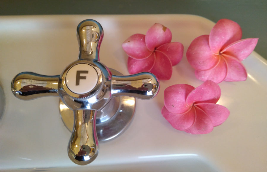 Flowers beside a bath tap at Hacienda de Abajo, Tazacorte, La Palma island